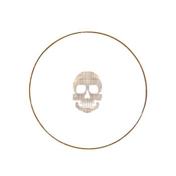 Zara_Home_Skull